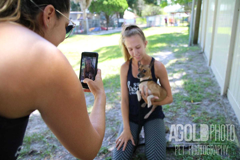 SoHo Hound_AGoldPhoto Pet Photography_21