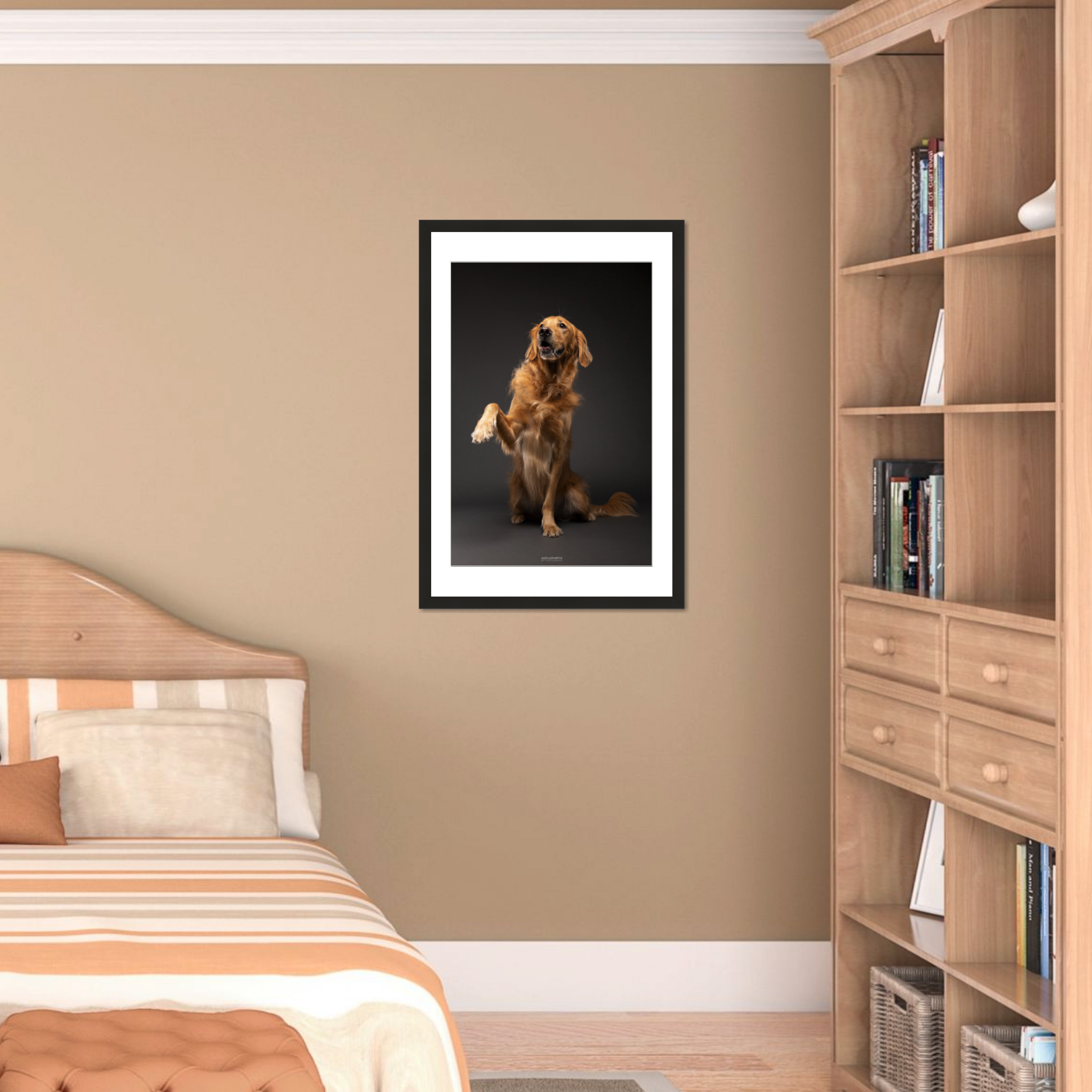 Statement Piece_AGoldPhoto Pet Photography