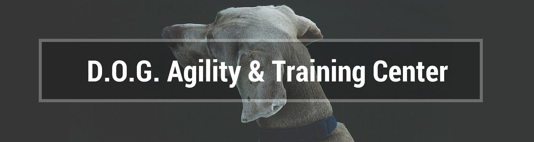 D.O.G. Agility and Training Center