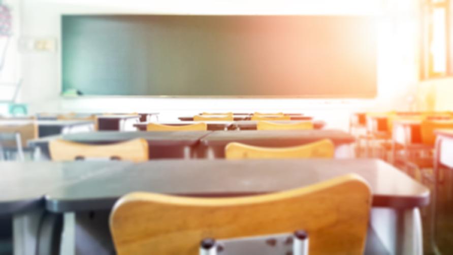 The Broader Impact of School Closures