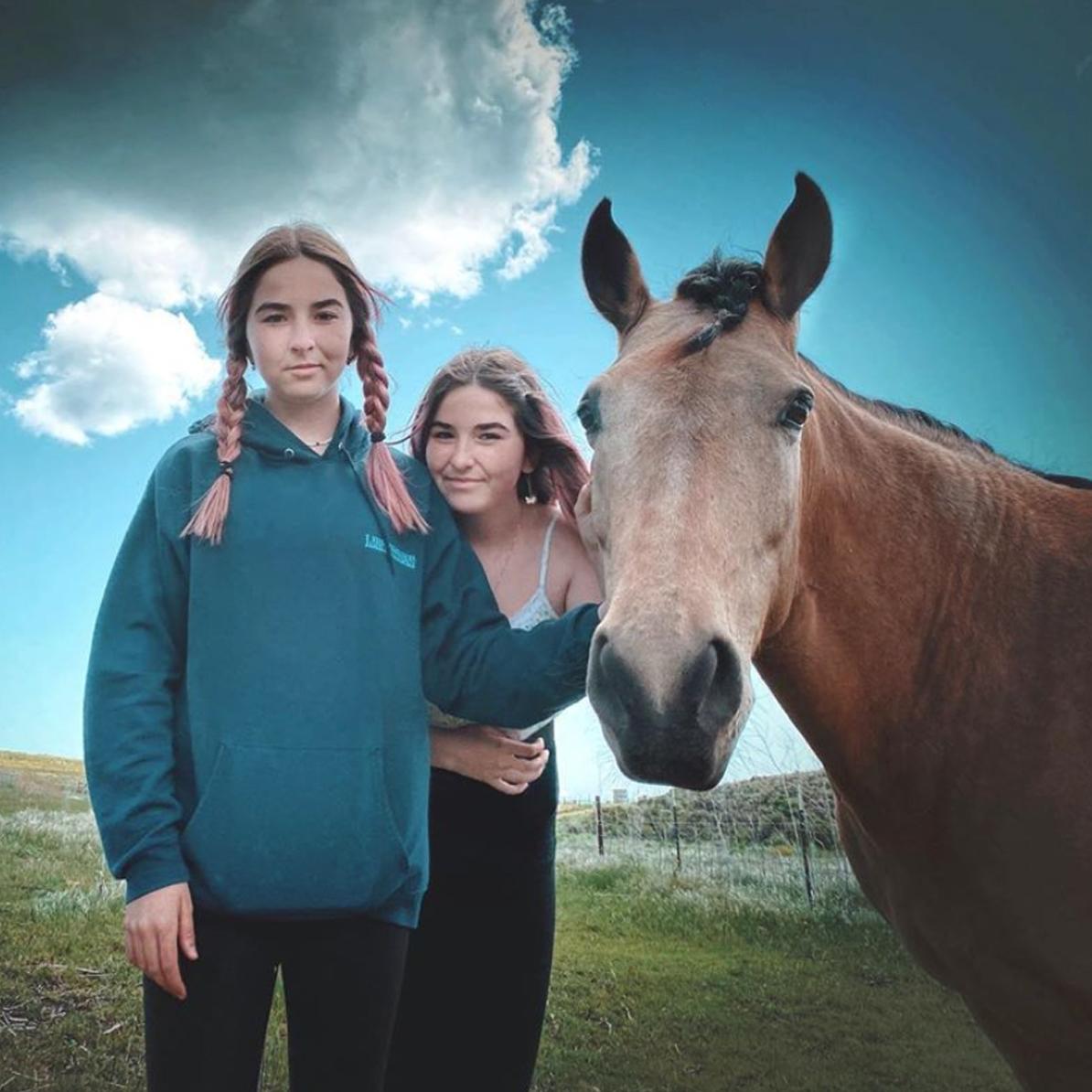 Santa Ynez Equine Photographer