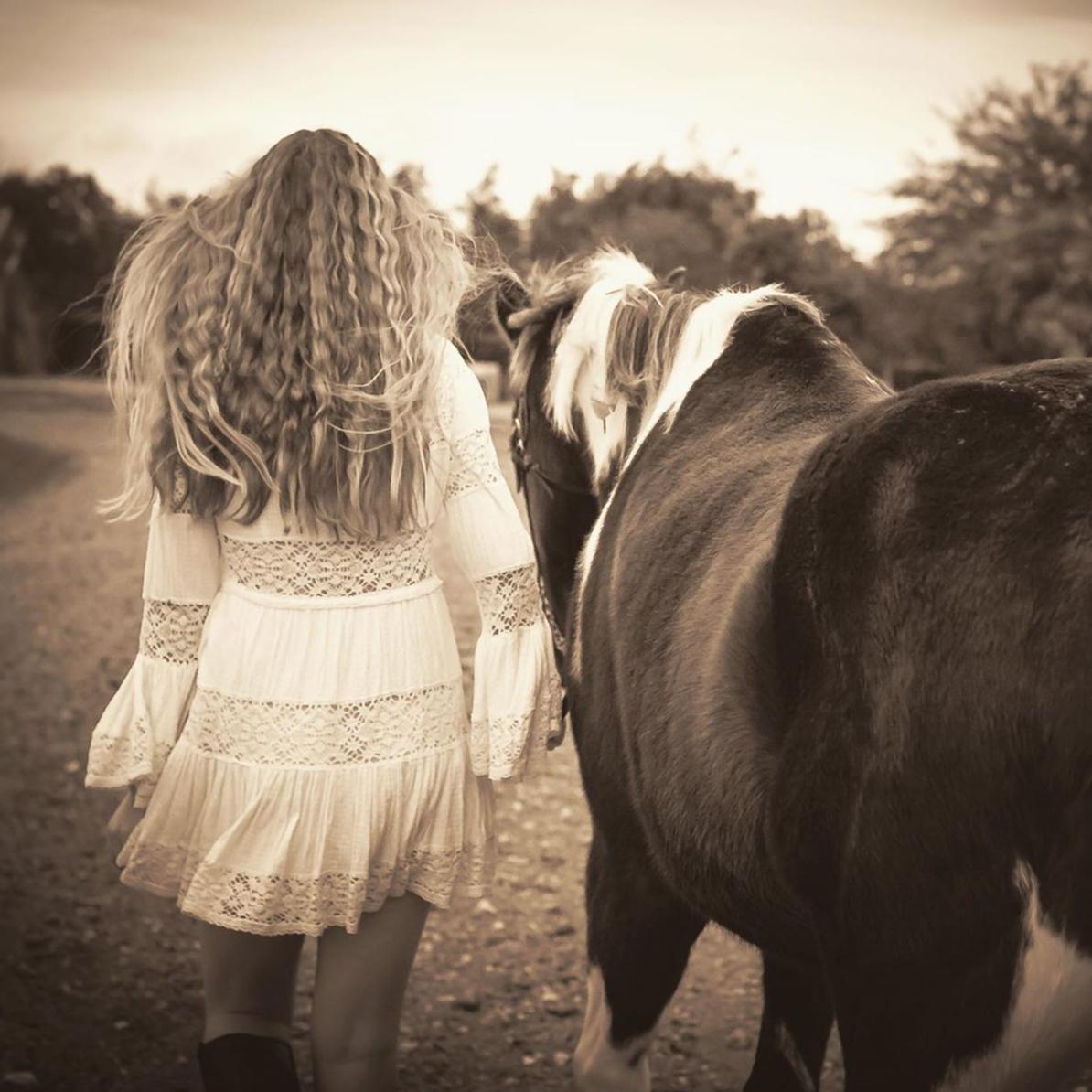 Santa Ynez Horse Photographer