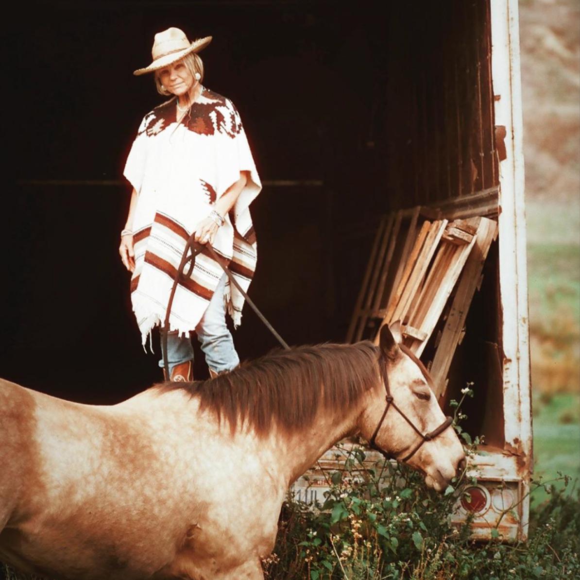 Santa Ynez Valley Equine Photographer