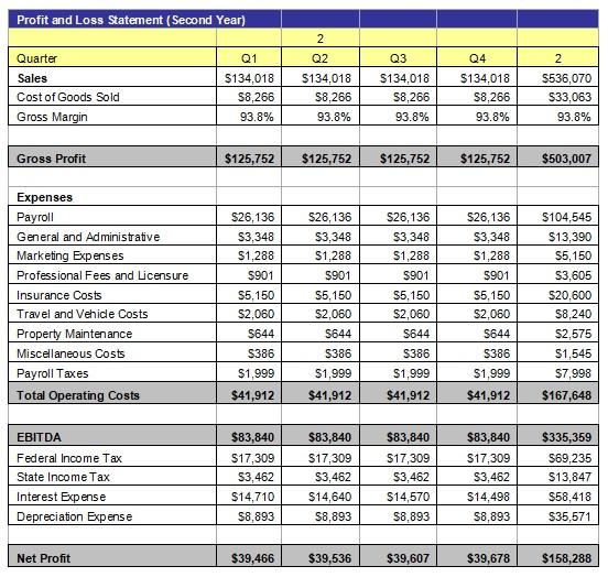 Profit and Loss Statement 3