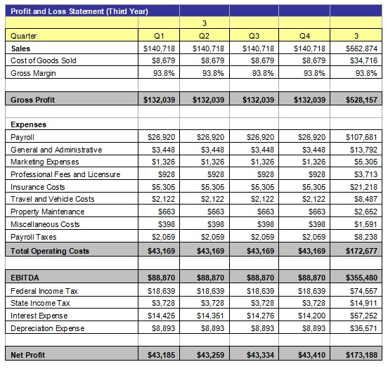 Profit and Loss Statement 4