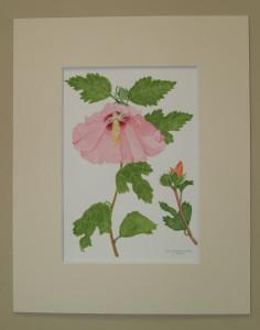 watercolor by Geri Greinke-Mack