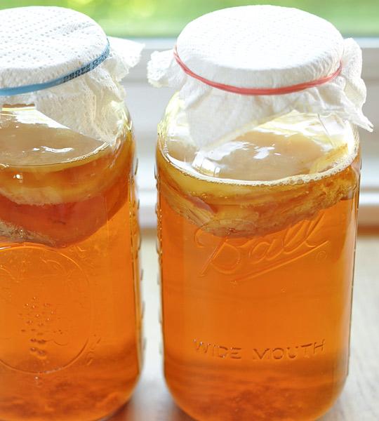 Jars of Kombucha tea