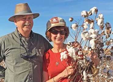 cotton picked during tour