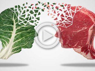 Omnivores, Herbivore or Carnivores?   Meat Your Future