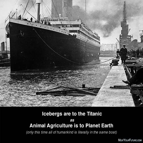 The Titanic and Animal Agriculture   Meat Your Future