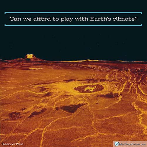 Can we afford to play with Earth's climate? | Meat Your Future