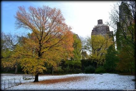 neige-automne-new-york-voyage-usa