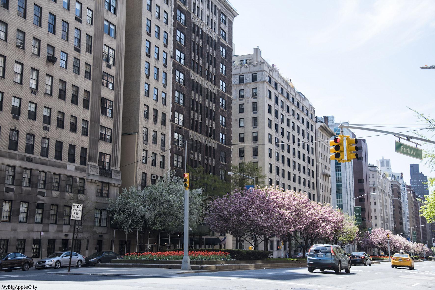 Park-avenue-NYC-travel-blogger-photography