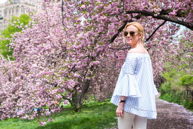Cherry blossom Central Park 2017