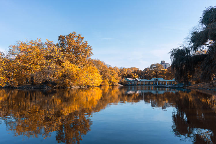 Boathouse Central Park Fall foliage NYC travel blog