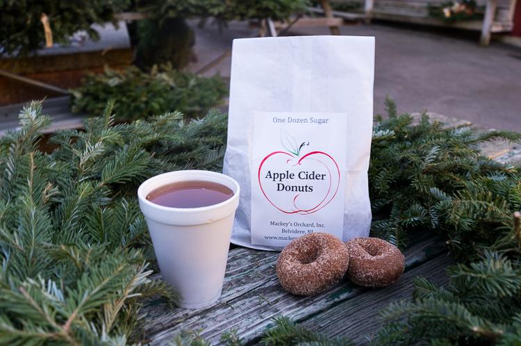 Apple Cider Donuts, road trip NY NJ