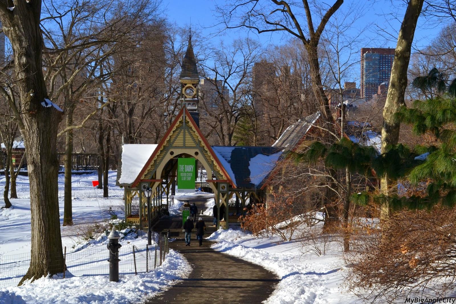 new-york-polar-vortex-nyc-blogger-mybigapplecity