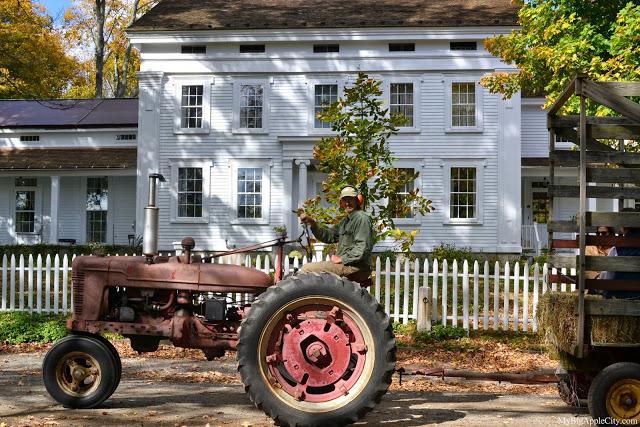 pumpkin-picking-nyc-mybigapplecity-farmer