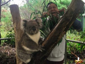 Cleland Wildlife reserve near Adelaide. With me a Koala