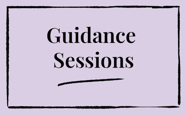 Guidance Sessions