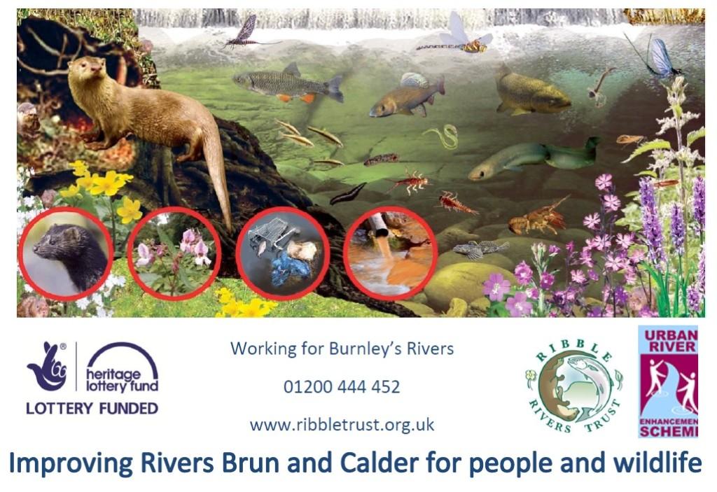 Improving Rivers Banner