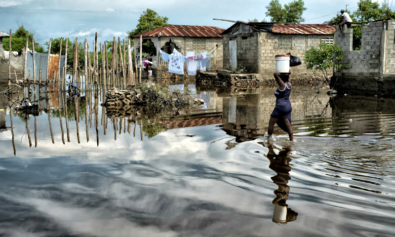 Pathways to Inclusion in Disaster Risk Management