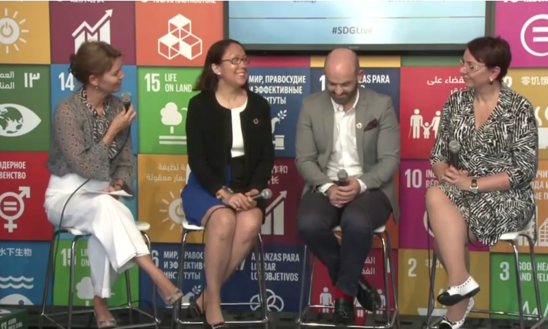 How critical is the role of the private sector in achieving the SDGs?, SDG Media Zone