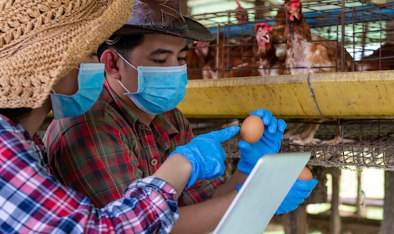 COVID-19 pandemic offers rare chance for food systems transformation