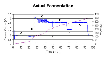 Actual Fermentation chart