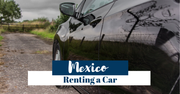 Mex Rent Car Review