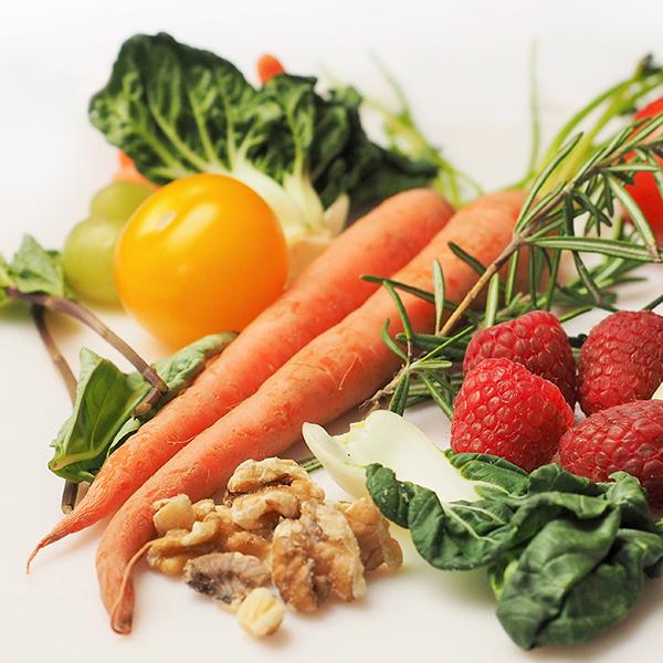 Vegan Resources