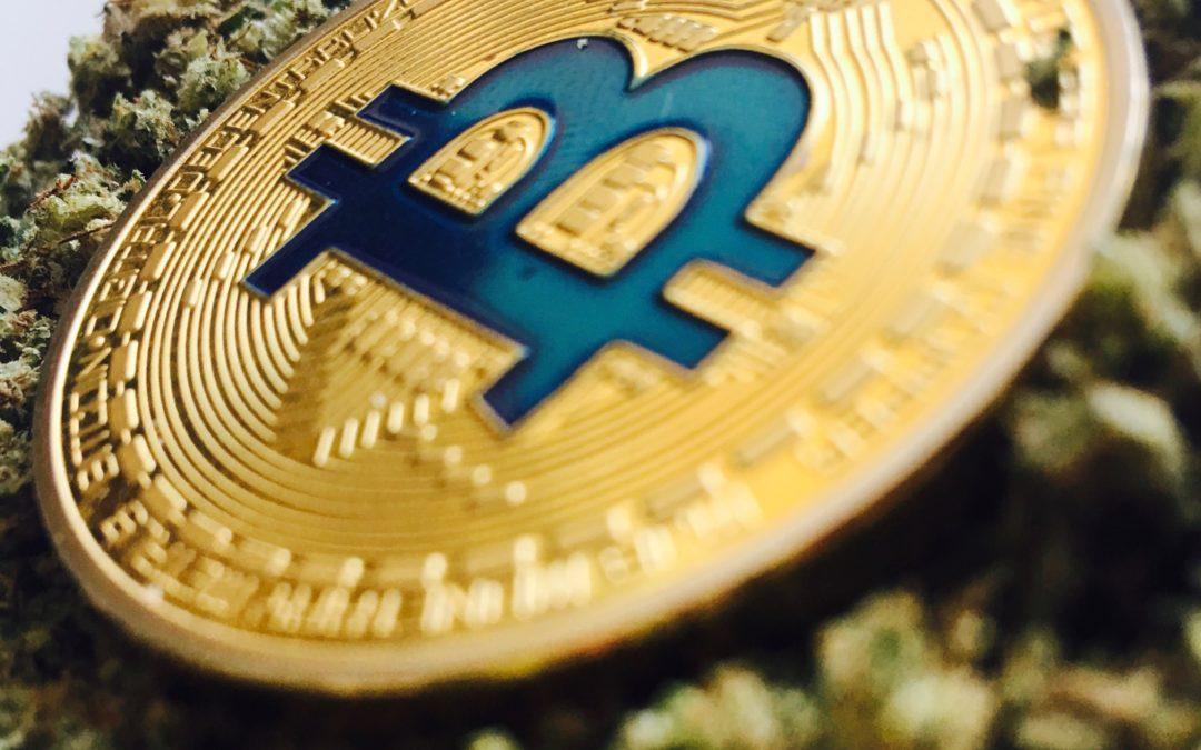 Is Marijuana the Next Bitcoin?