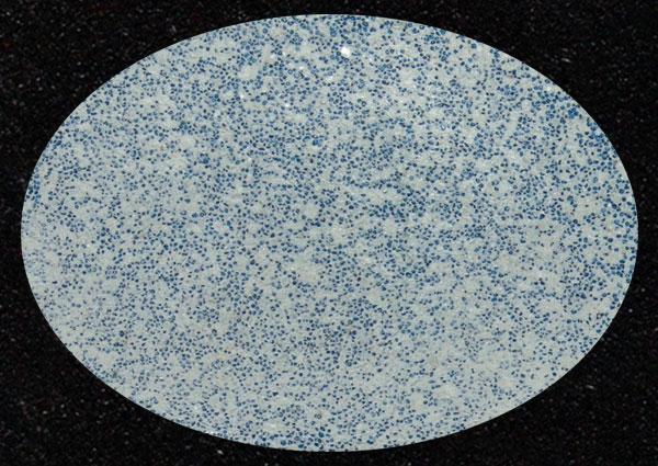 Blue S6