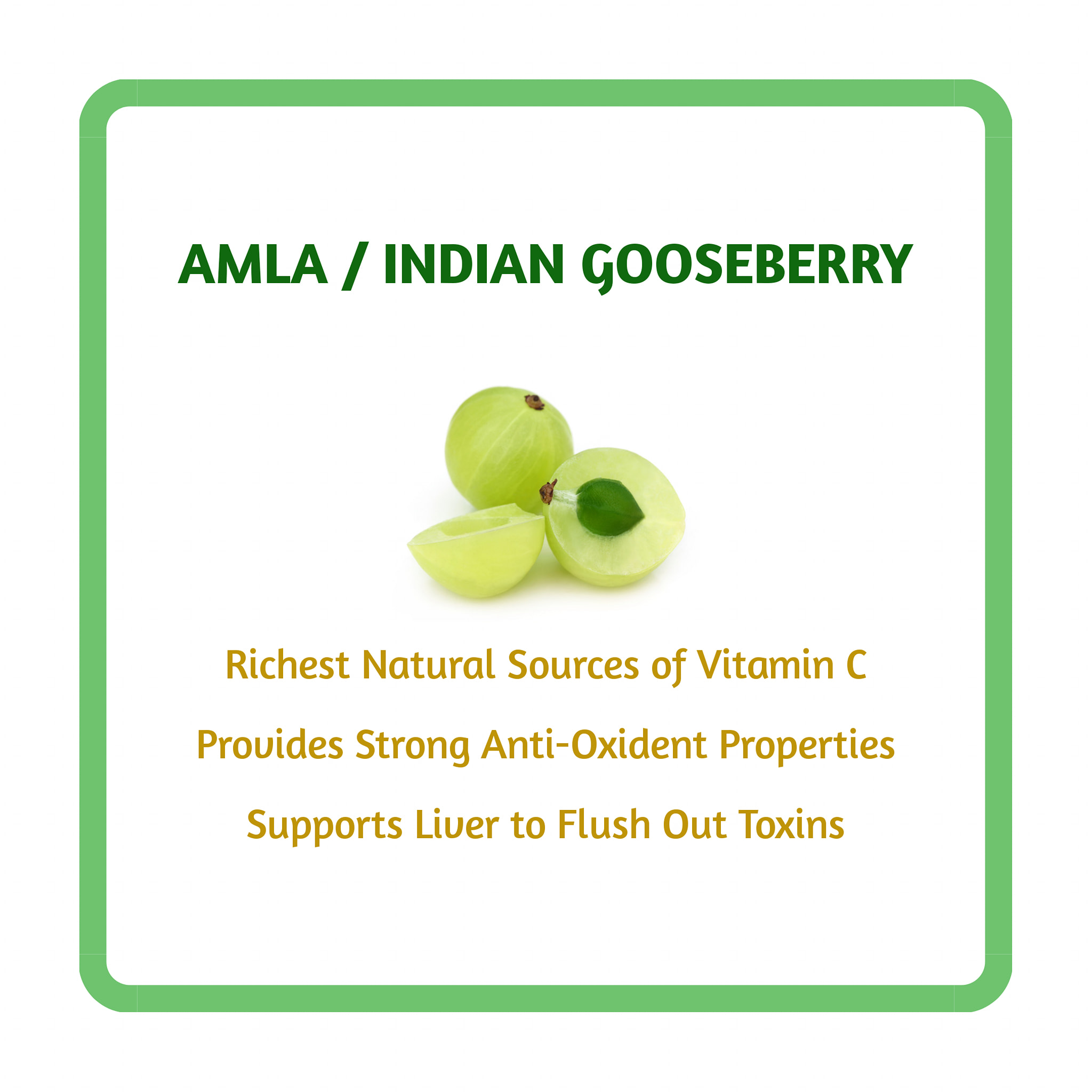 Indian gooseberry rich source of vitamin c and anti oxidants