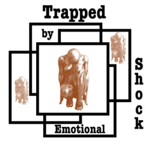 Resolving Shock and Confusion