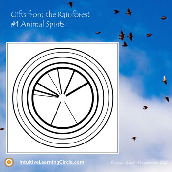 Animal Spirits from Gifts from the Rainforest