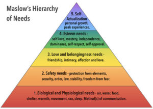 Reform Your Plan - Hierarchy of Needs