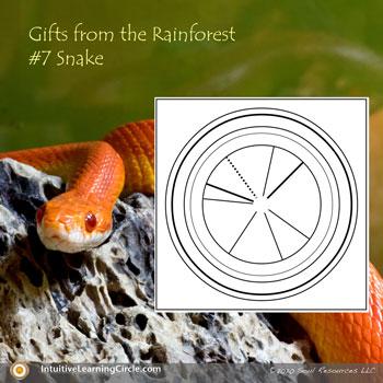 Snake Medicine - Animal Totems