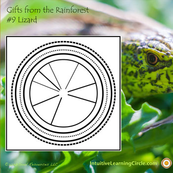 Lizard Medicine from Gifts from the Rainforest