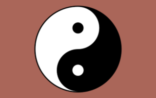 Ying Yang Balance Systems