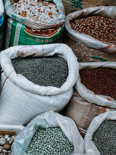 Sorting Seeds, Kristen Sturdivant
