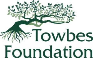 Towbes Foundation Logo