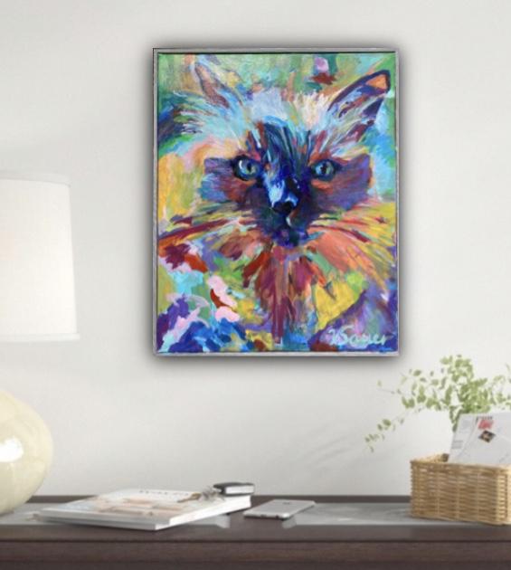 showroom persian cat