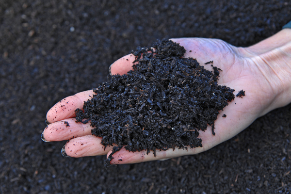 Biochar mixed with compost makes a rich soil amendment beneficial for your garden.