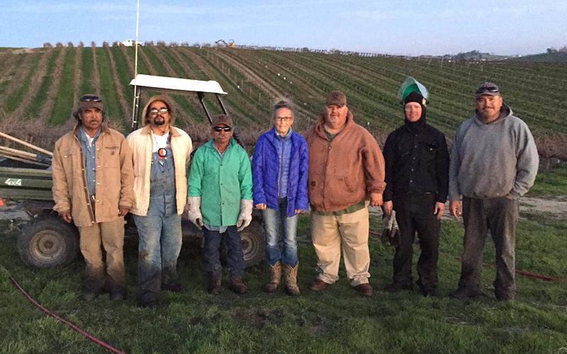 Pine Hawk Vineyards Crew