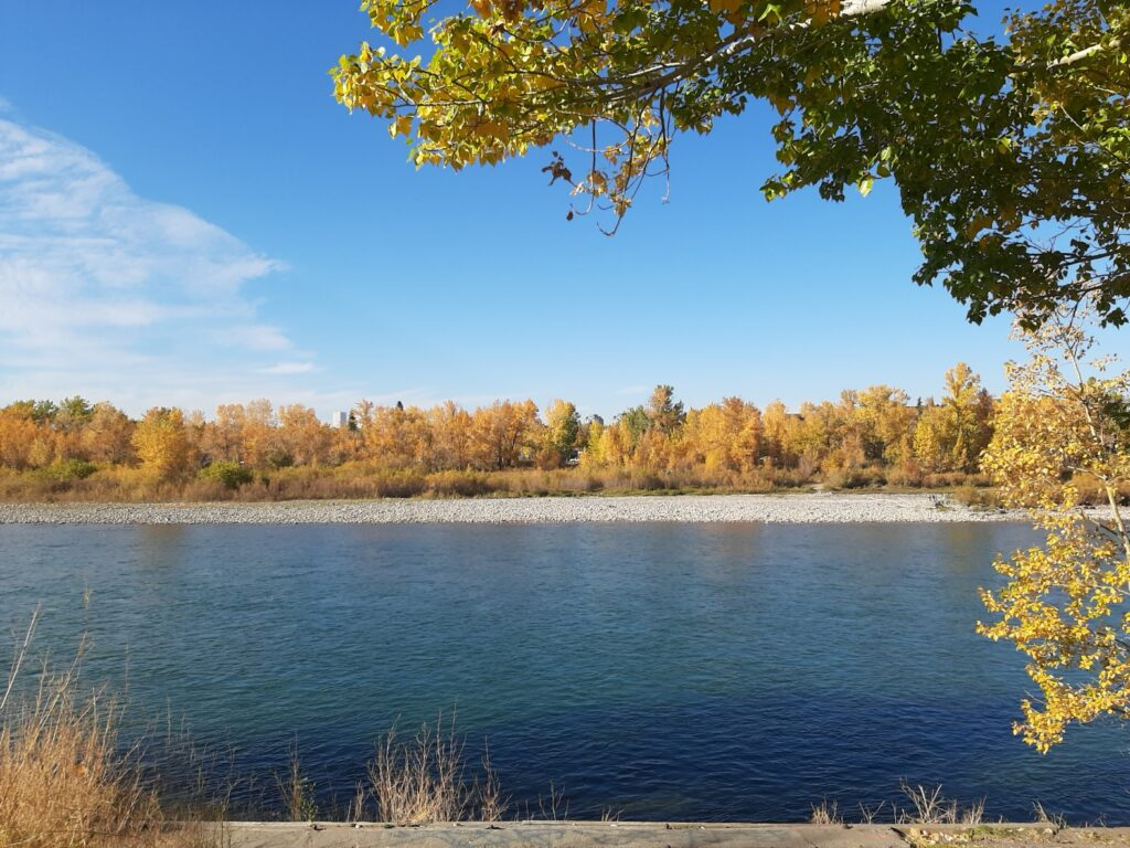 the Bow river in Calgary in the Fall