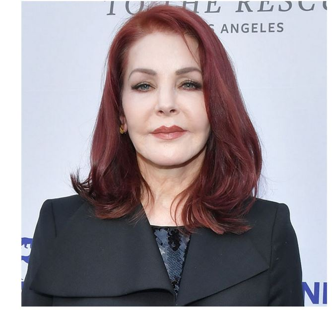 Priscilla Presley a business woman and an actress