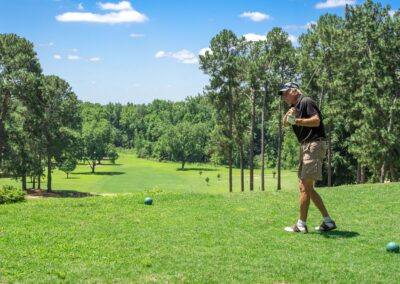 golf courses in prattville al