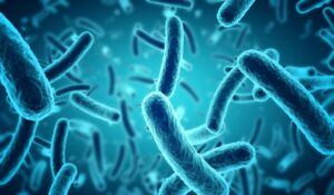The organisms that cause diarrhea are mostly bacteria –Salmonella and Clostridium difficile are among the most common