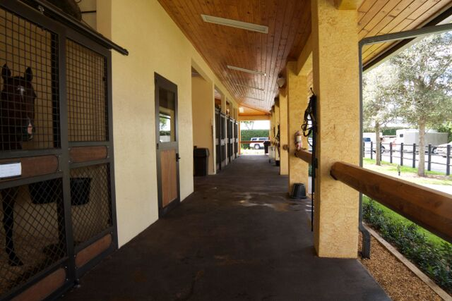 palm beach equine clinic hospital barn aisle